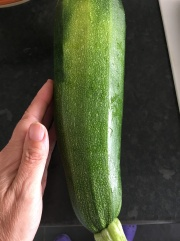 Another huge courgette